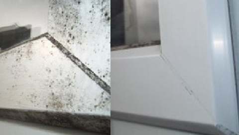 Corner of and algae covered UPVC window frame together with the same after cleaning with Vistal Multi Surface Cleaner